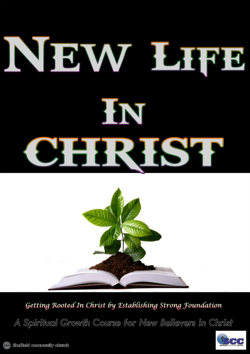 New Life in Christ final final